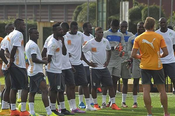 Côte d'Ivoire : les Éléphants n'auront pas de prime de participation pour la CAN 2015