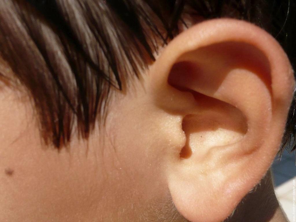 maladie cardiovasculaire  le signe dans votre oreille
